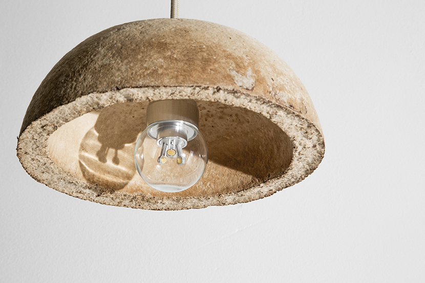 Lamp_The_Growing_Lab_Officina_Corpuscoli_Maurizio_Montalti_Bowl_8_Mycelium_Bowl_with_fungi2