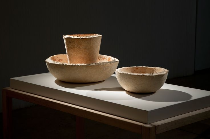 The_Growing_Lab_Officina_Corpuscoli_Maurizio_Montalti_Bowl_8_Mycelium_Bowl_with_fungi2