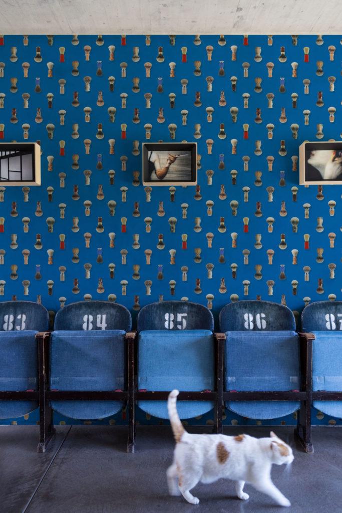 barba wallpaper blu